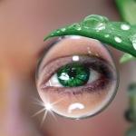 Интересные заметки о контактных линзах