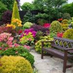 ЕШКО – эффективное дистанционное изучение курса «Садово-парковый дизайн»