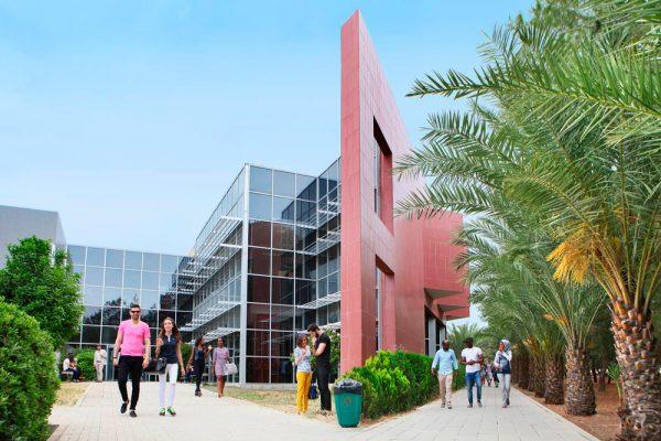 Образование на Кипре: от детского сада до вуза